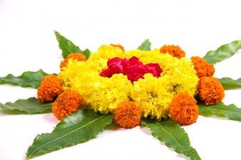 Ringelblume Blume