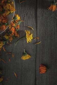 Ringelblume. ringelblumenblütenblatt-draufsicht auf holzwand. calendula tasse (ringelblume blume) blatt natürliche sommerblume. calendula officinalis heilpflanzenblätter & kräuterblätter - gesund konz