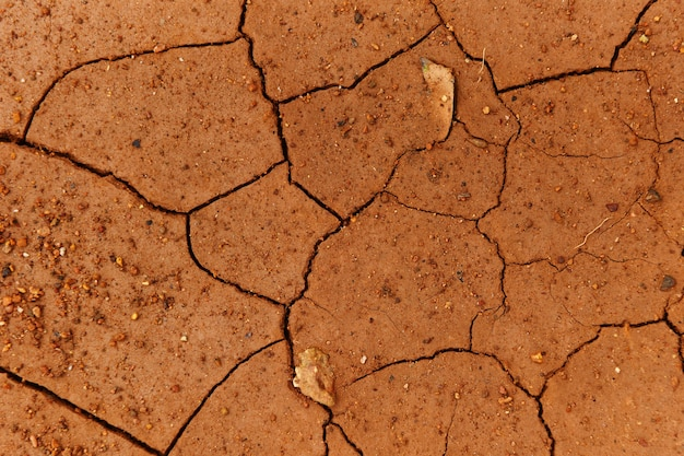 Risse des getrockneten bodens in trockener jahreszeit / trockener boden, rissige erdstruktur