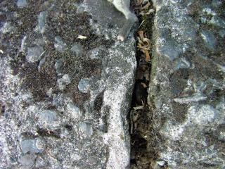 Rissige gestein