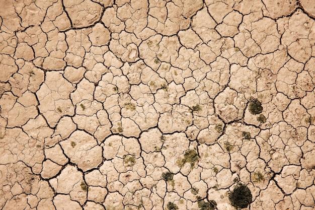 Rissiger trockener boden bodenökologiesystem krise globale erwärmung probleme konzept land ohne wasser