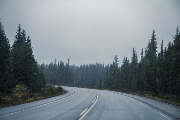 Roadtrip auf der autobahn mit schneesturm im nadelwald im banff-nationalpark auf düster