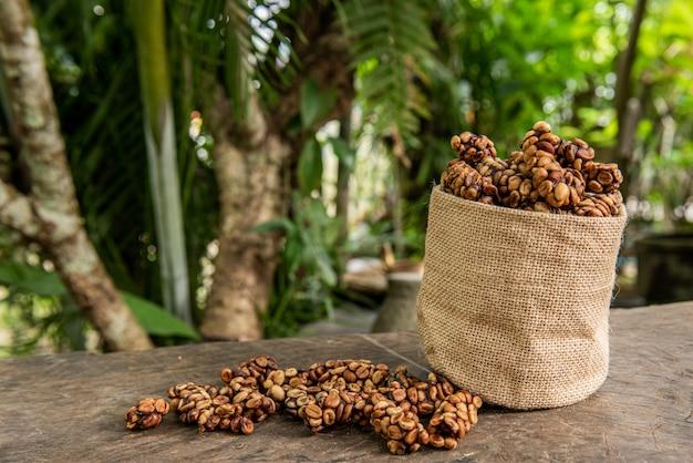 Robusta, arabica kaffeebohnen