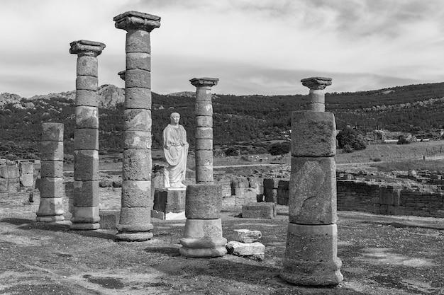 Römische ruinen von baelo claudia in der nähe von tarifa. cadiz spanien.