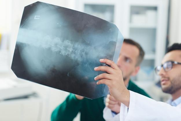 Röntgenaufnahme der wirbelsäule