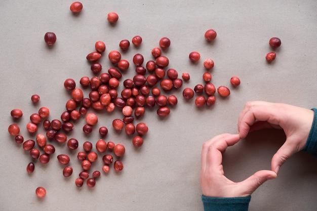 Rohe frische cranberry-beere, ansicht von oben. cranberry hintergrund, draufsicht, flach lag auf bastelpapier. cranberries verstreut auf recyceltem braunem papier, weibliche hände, die herzzeichen zeigen.