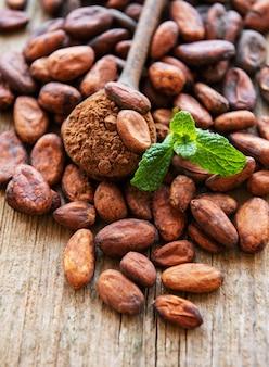 Rohe kakaobohnen und kakaopulver