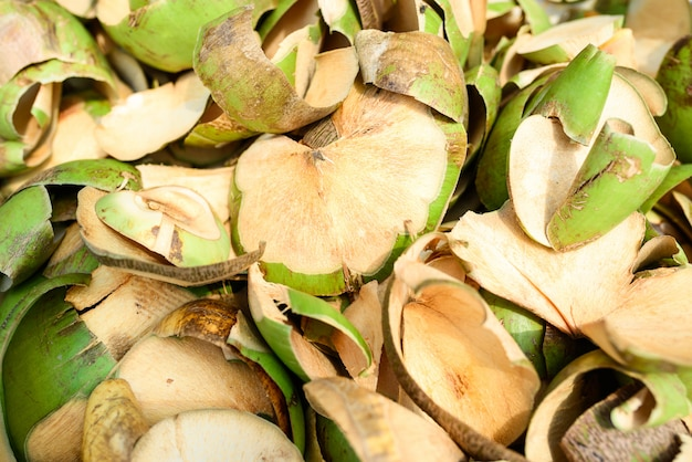 Rohe kokosnussschale