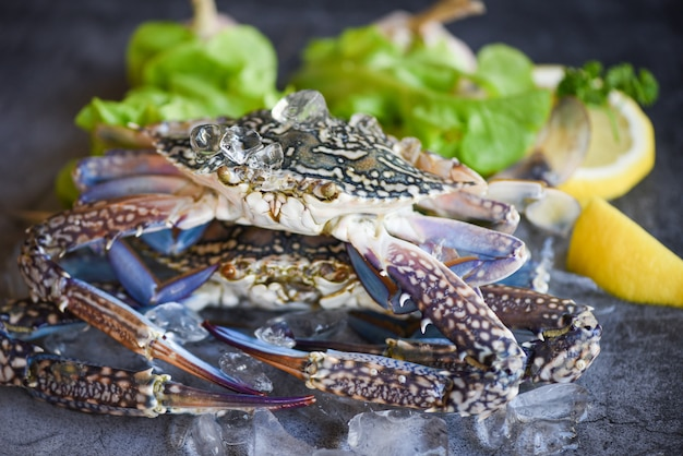 Rohe krabbe auf eis mit auf dunkelheit