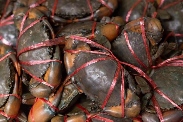 Rohe krabben zum verkauf auf dem markt.