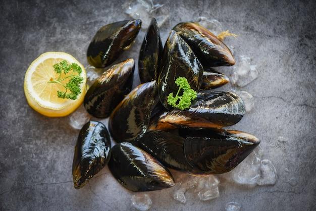 Rohe miesmuscheln mit kräutern zitrone und dunklem plattenhintergrund - frische meeresfrüchteschalentiere auf eis im restaurant oder für verkauf im marktmuschel-oberteillebensmittel
