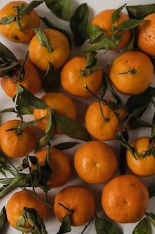 Rohe orangen, mandarinenfrüchte mit grünem blattmuster auf weiß
