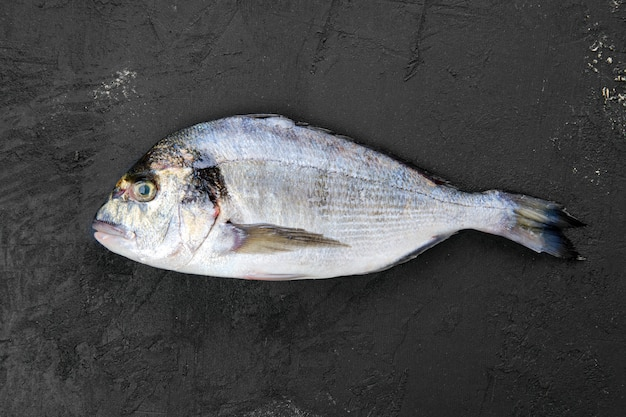 Roher doradafisch auf schwarzem steintisch