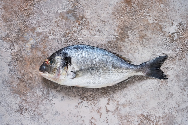 Roher dorado-fisch auf broun-betonhintergrund. frische bio-seebrasse oder dorada-fisch. draufsicht, kopierraum