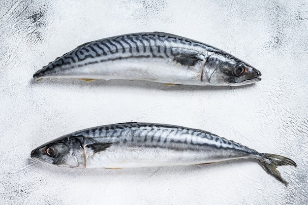 Roher fisch makrele auf einem küchentisch.