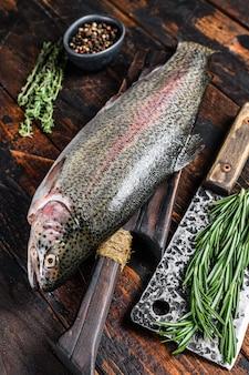 Roher frischer regenbogenforellenfisch mit kräutern