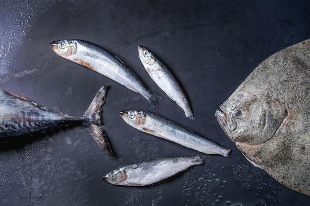 Roher frischer thunfisch, hering und flunderfisch