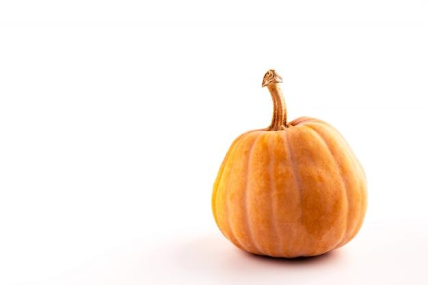 Roher kürbis des orange herbstes auf weiß