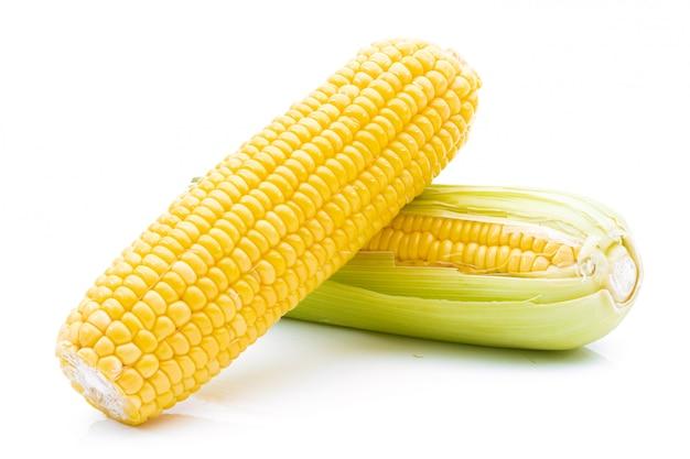 Roher mais auf einem weißen hintergrund