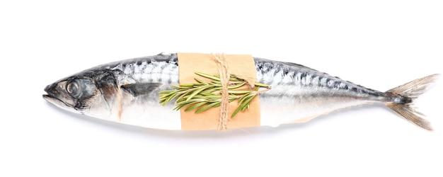 Roher makrelenfisch mit rosmarin isoliert