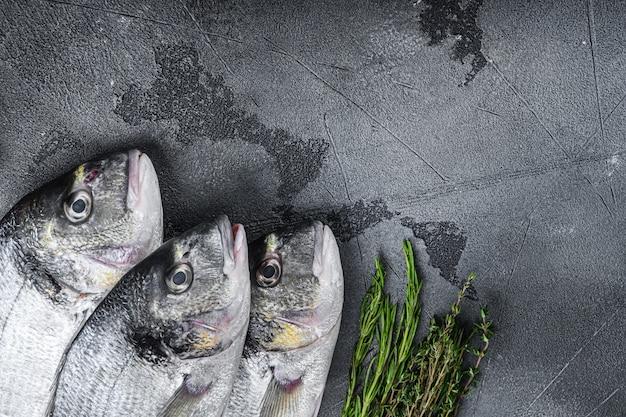 Roher satz seebrasse oder vergoldeter brassen-dorada-fisch mit kräuter-pfeffer-limetten-tomate zum kochen und grillen auf grauem strukturiertem hintergrund, seitenansicht mit raum für text.