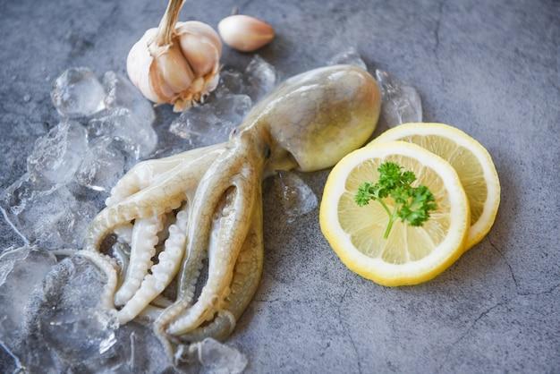 Roher tintenfisch auf eis mit salatgewürzen zitronenknoblauch auf dunkelheit