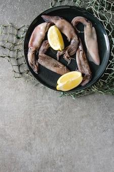 Roher tintenfisch calamari
