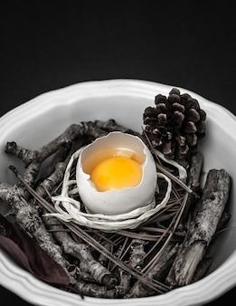 Rohes ei mit zweigen auf schüssel