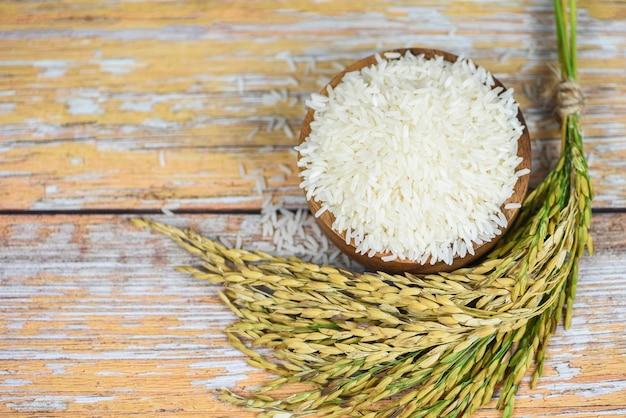 Rohes jasminreiskorn mit dem ohr von paddylandwirtschaftsprodukten für lebensmittel im asiatisch-thailändischen reisweiß auf schüssel- und holzhintergrund