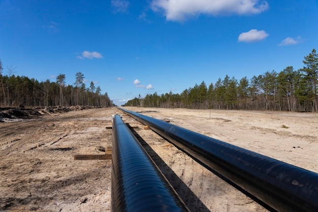 Rohöl- und erdgaspipelinebauarbeiten im waldgebiet. petrochemisches rohr auf holzstützen. installation und bau der pipeline für den transport von gas zur lng-anlage