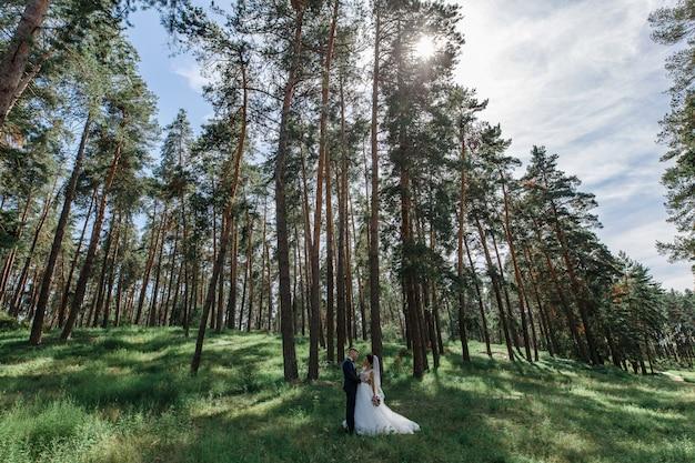 Romantischer hochzeitsmoment. glückliche junge hochzeitspaare draußen im park, der sich schaut. emotionales braut- und bräutigamporträt draußen am sonnigen tag. gerade geheiratet. hochzeitstag