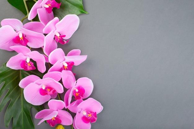 Romantischer zweig der rosa orchidee auf grauem hintergrund.