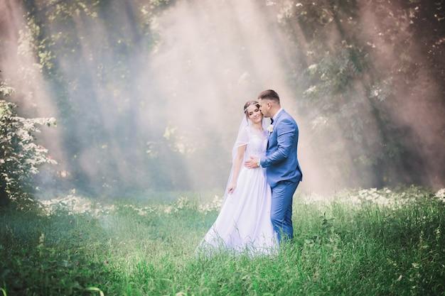 Romantisches paar im sonnenschein