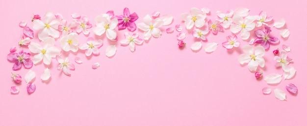 Rosa apfelblumen auf rosa hintergrund