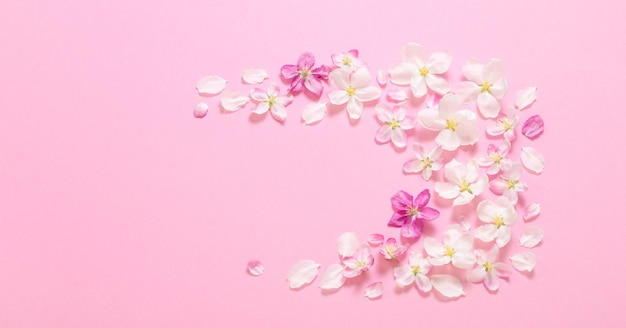 Rosa apfelblumen auf rosa oberfläche