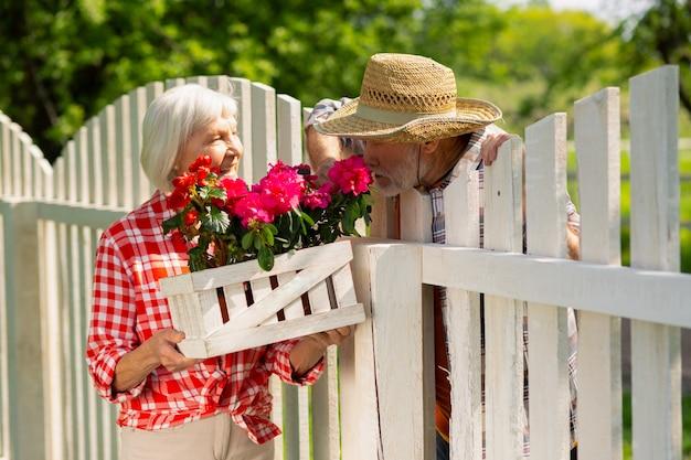 Rosa blüten riechen. bärtiger mann mit strohhut, der rosa blumen riecht, während er mit dem nachbarn spricht