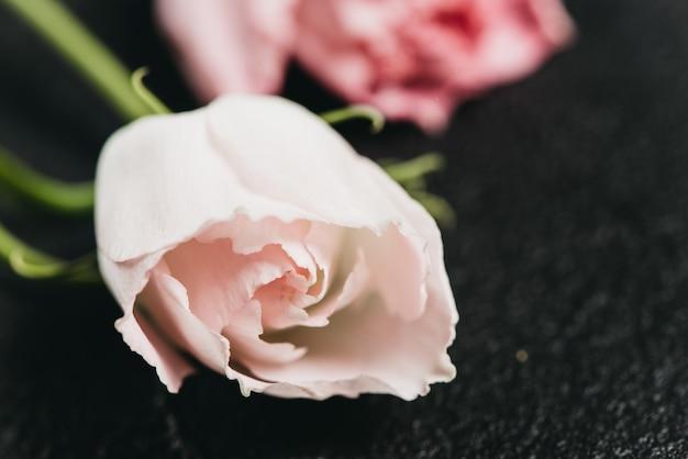 Rosa blume auf einem dunklen zement hintergrund