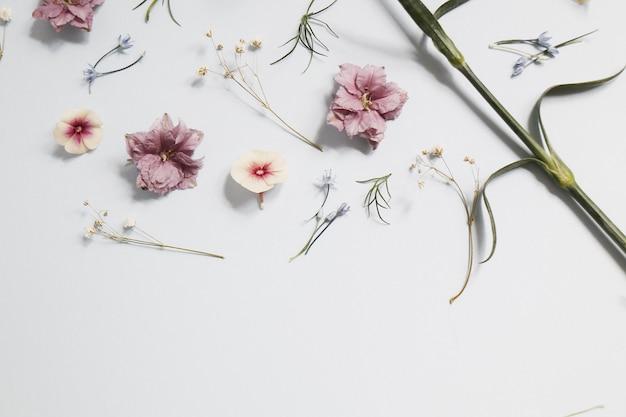 Rosa blumen auf weißem tisch