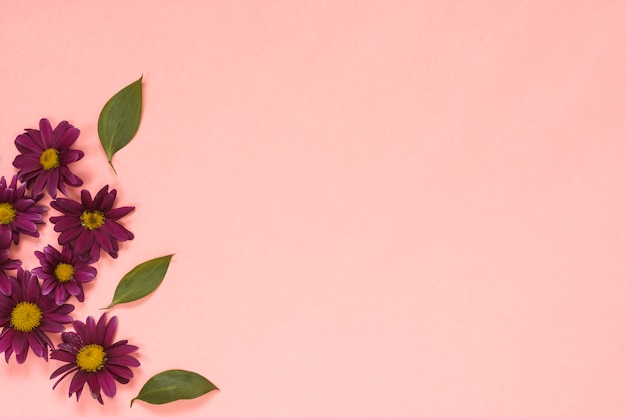 Rosa blumen mit blättern auf tabelle