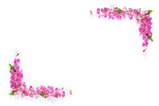 Rosa blumenblumengrenzrahmen als ecke auf weißem hintergrund copyspace