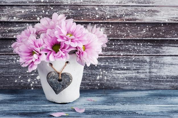 Rosa chrysantheme im konkreten topf