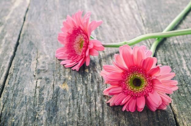 Rosa gerberagänseblümchenblumen auf holztisch