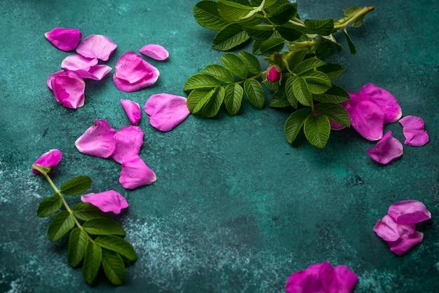 Rosa hagebuttenblätter mit blättern auf grünem tisch