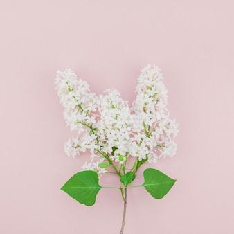 Rosa hintergrund mit weißen lila blumen