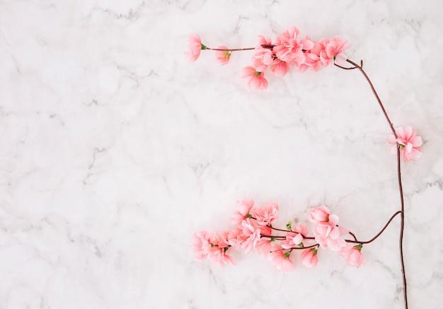 Rosa kirschblüte über dem strukturierten hintergrund des marmors