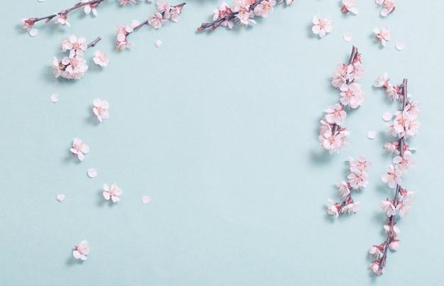 Rosa kirschblumen auf papierhintergrund
