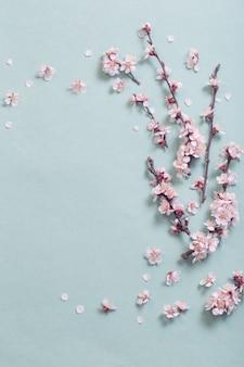 Rosa kirschblumen auf papieroberfläche
