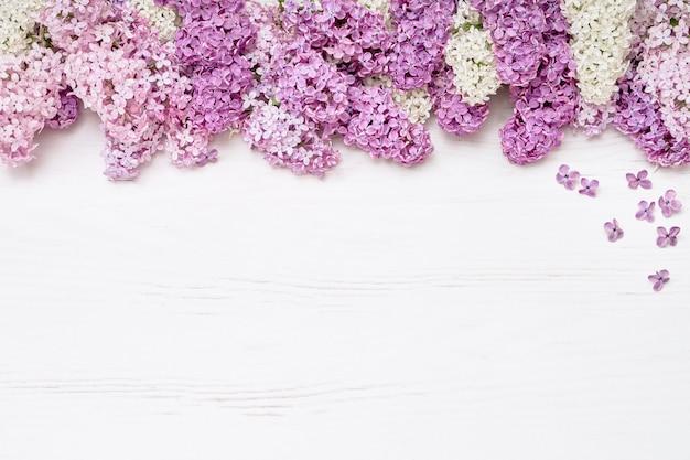 Rosa lila blumen auf weißem hintergrund. draufsicht, kopie, raum. ferienkonzept. frühling hintergrund.