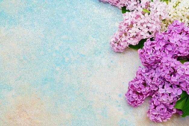 Rosa lila blumengrenze auf blauem pastell