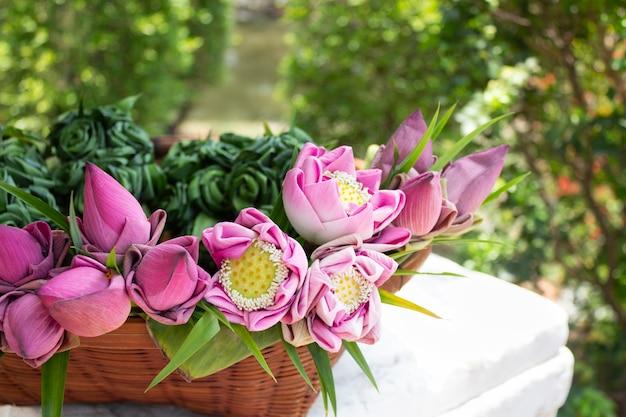 Rosa lotusblumen für buddhistischen tempel in einem korb